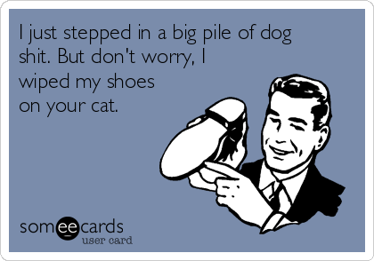 I just stepped in a big pile of dog shit. But don't worry, I wiped my shoes on your cat.