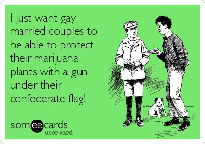 I just want gay married couples to be able to protect their marijuana plants with a gun under their confederate flag!