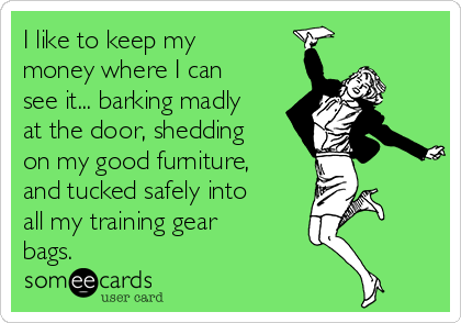 I like to keep my money where I can see it... barking madly at the door, shedding on my good furniture, and tucked safely into all my training gear bags.