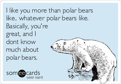 I like you more than polar bears like.. whatever polar bears like. Basically, you're great, and I dont know much about polar bears.