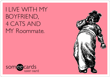 I LIVE WITH MY BOYFRIEND, 4 CATS AND MY Roommate.