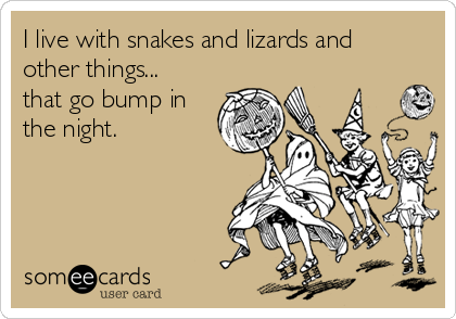 I live with snakes and lizards and other things... that go bump in the night.