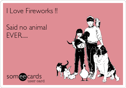 I Love Fireworks !!  Said no animal EVER.....