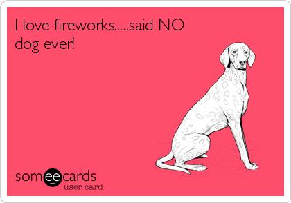 I love fireworks.....said NO dog ever!