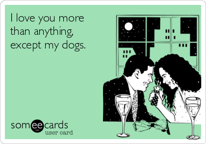 I love you more than anything, except my dogs.