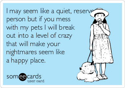 I may seem like a quiet, reserved person but if you mess  with my pets I will break out into a level of crazy that will make your nightmares seem like a happy place.