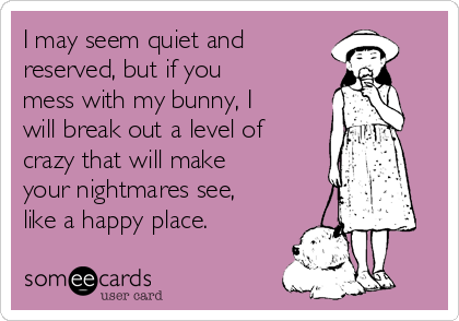 I may seem quiet and reserved, but if you mess with my bunny, I will break out a level of crazy that will make your nightmares see, like a happy place.