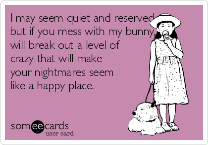 I may seem quiet and reserved, but if you mess with my bunny, i will break out a level of crazy that will make your nightmares seem like a happy place.