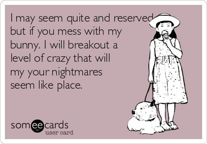I may seem quite and reserved, but if you mess with my bunny. I will breakout a level of crazy that will my your nightmares seem like place.