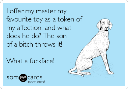 I offer my master my favourite toy as a token of my affection, and what does he do? The son of a bitch throws it!  What a fuckface!