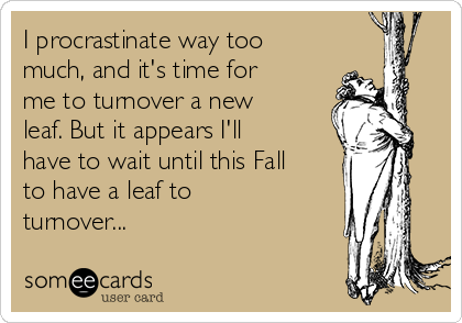 I procrastinate way too much, and it's time for me to turnover a new leaf. But it appears I'll have to wait until this Fall to have a leaf to turnover...