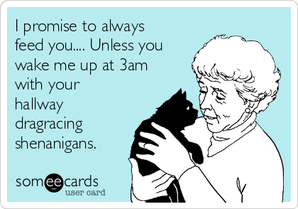 I promise to always feed you.... Unless you wake me up at 3am with your hallway dragracing shenanigans.