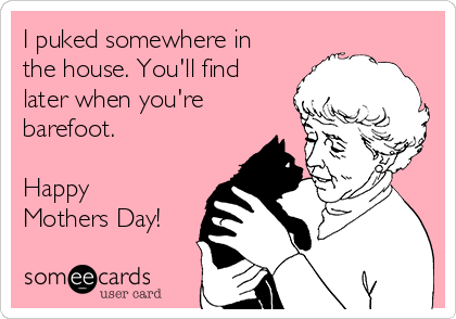 I puked somewhere in the house. You'll find later when you're barefoot.  Happy Mothers Day!