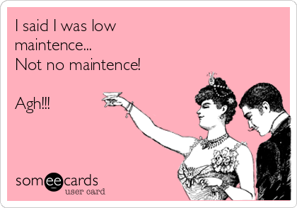 I said I was low  maintence...  Not no maintence!  Agh!!!