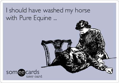 I should have washed my horse with Pure Equine ...