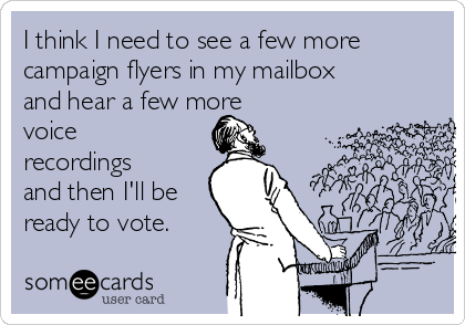 I think I need to see a few more campaign flyers in my mailbox and hear a few more voice recordings and then I'll be ready to vote.