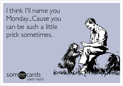 I think I'll name you Monday...Cause you can be such a little prick sometimes.
