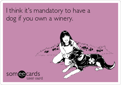 I think it's mandatory to have a dog if you own a winery.
