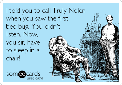 I told you to call Truly Nolen when you saw the first bed bug. You didn't listen. Now, you sir, have to sleep in a chair!