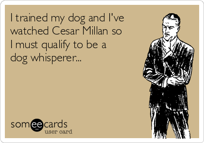 I trained my dog and I've watched Cesar Millan so I must qualify to be a dog whisperer...