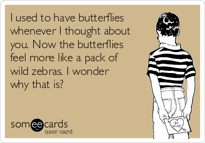 I used to have butterflies whenever I thought about you. Now the butterflies feel more like a pack of wild zebras. I wonder why that is?