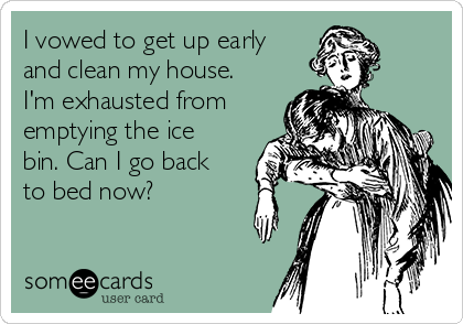 I vowed to get up early and clean my house. I'm exhausted from emptying the ice bin. Can I go back to bed now?