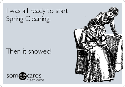 I was all ready to start Spring Cleaning.    Then it snowed!