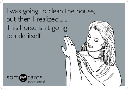 I was going to clean the house, but then I realized....... This horse isn't going to ride itself