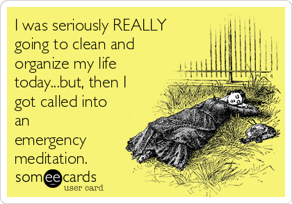 I was seriously REALLY going to clean and organize my life today...but, then I got called into an emergency meditation.