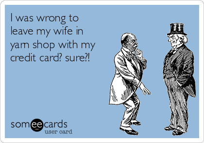 I was wrong to leave my wife in yarn shop with my credit card? sure?!