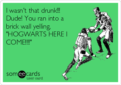 """I wasn't that drunk!!! Dude! You ran into a brick wall yelling, """"HOGWARTS HERE I COME!!!!"""""""