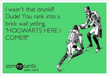 "I wasn't that drunk!!! Dude! You rank into a brick wall yelling, ""HOGWARTS HERE I COME!!!!"""