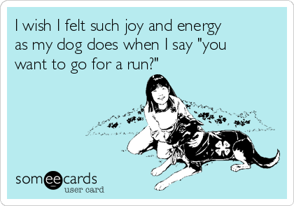 """I wish I felt such joy and energy as my dog does when I say """"you want to go for a run?"""""""