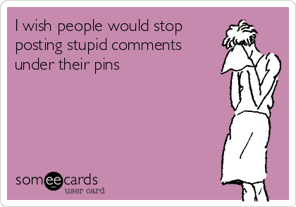 I wish people would stop  posting stupid comments  under their pins