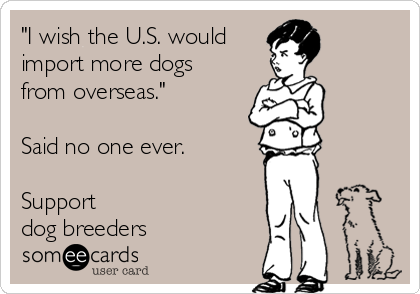 """""""I wish the U.S. would  import more dogs from overseas.""""  Said no one ever.  Support  dog breeders"""