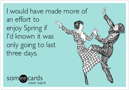 I would have made more of an effort to enjoy Spring if I'd known it was only going to last three days.