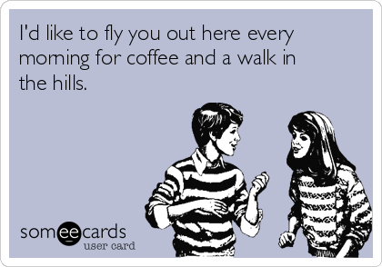 I'd like to fly you out here every morning for coffee and a walk in the hills.