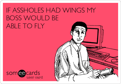 IF ASSHOLES HAD WINGS MY BOSS WOULD BE ABLE TO FLY