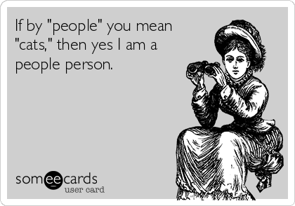 "If by ""people"" you mean ""cats,"" then yes I am a people person."