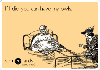 If I die, you can have my owls.
