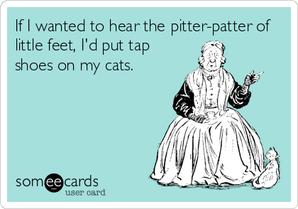 If I wanted to hear the pitter-patter of little feet, I'd put tap shoes on my cats.