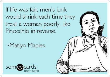 If life was fair, men's junk would shrink each time they treat a woman poorly, like Pinocchio in reverse.  ~Matlyn Maples