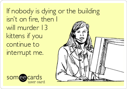 If nobody is dying or the building isn't on fire, then I will murder 13 kittens if you continue to interrupt me.