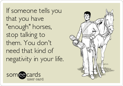 "If someone tells you that you have ""enough"" horses, stop talking to them. You don't need that kind of negativity in your life."