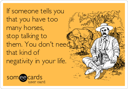 If someone tells you that you have too many horses, stop talking to them. You don't need that kind of negativity in your life.