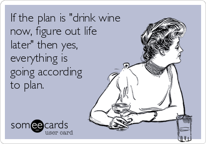 "If the plan is ""drink wine now, figure out life later"" then yes, everything is going according to plan."