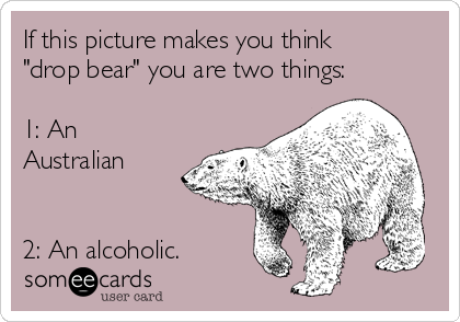 "If this picture makes you think ""drop bear"" you are two things:  1: An Australian   2: An alcoholic."