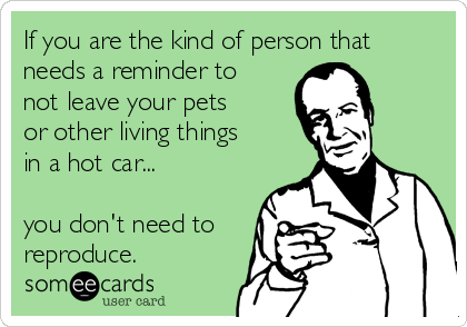If you are the kind of person that needs a reminder to not leave your pets or other living things in a hot car...  you don't need to reproduce.