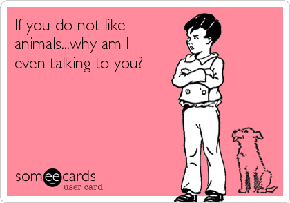 If you do not like  animals...why am I even talking to you?