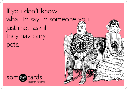 If you don't know what to say to someone you just met, ask if they have any pets.